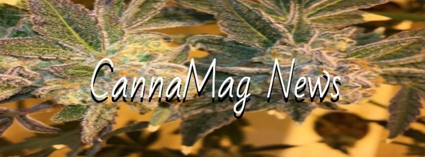 CannaMag-News
